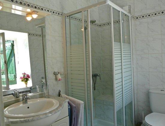 Colours of Pays Cathare: Art Nouveau Bathroom