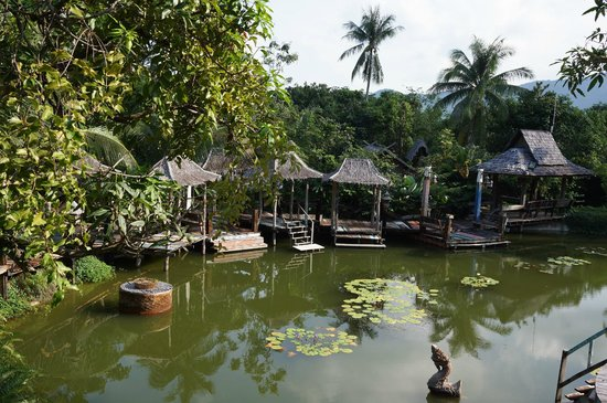 Santhiya Koh Phangan Resort & Spa: pond near the supreme deluxe rooms