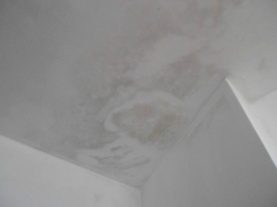Mandira Bungalows: Damp spots on the ceiling