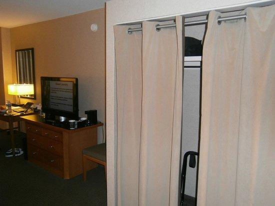 Hyatt Regency McCormick Place: room view2