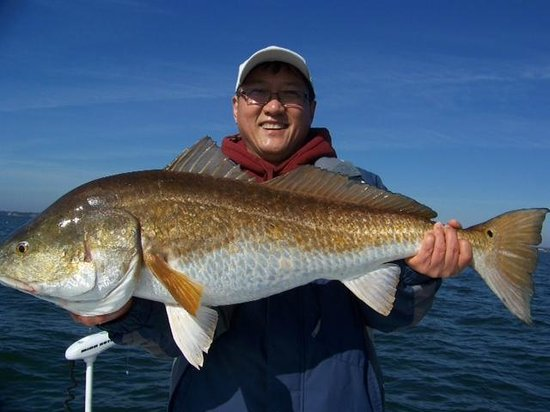 Red fish, Dec 30th 2012(Perdido Key)