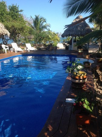 Miller's Landing Resort: pool to sea