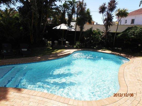 Endless Summer Guest House : Pool und Garten