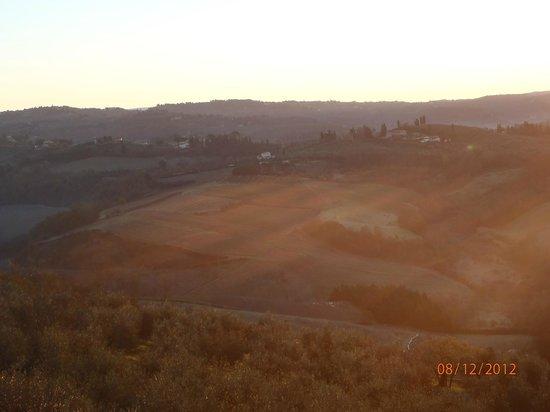 La Collina degli Olivi: Panorama