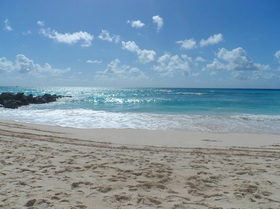 Dover, Barbados: Turtle beach