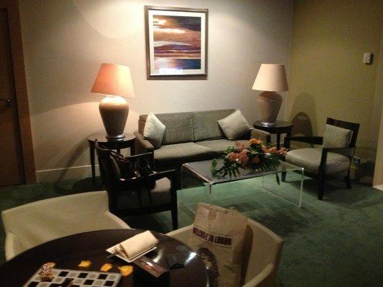 Sofitel Cairo El Gezirah: Lounge room