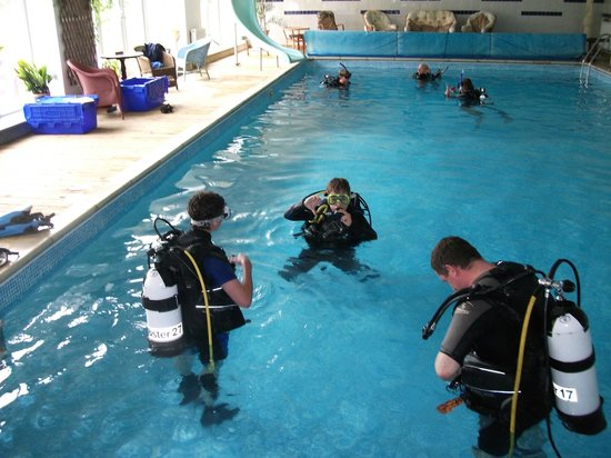 Glebe House B & B: Divers enjoying a training session in large heated indoor swimming pool