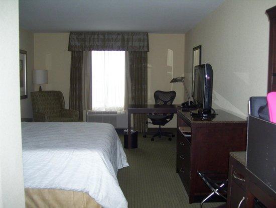 Hilton Garden Inn Lakeland: My single room with king bed