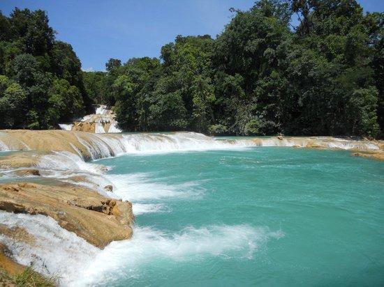 Cascate agua azul picture of cascadas de agua azul for Cascadas de agua
