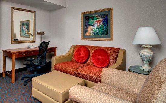 Hilton Garden Inn Detroit Metro Airport: Guest Room Living Area