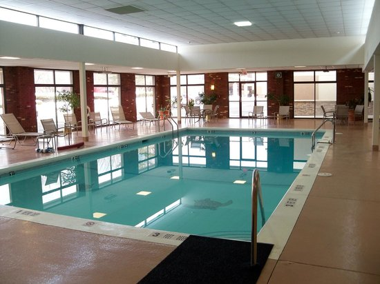 Holiday Inn Elmira Riverview : Pool