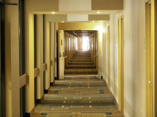 Holiday Inn Elmira Riverview : Hallway