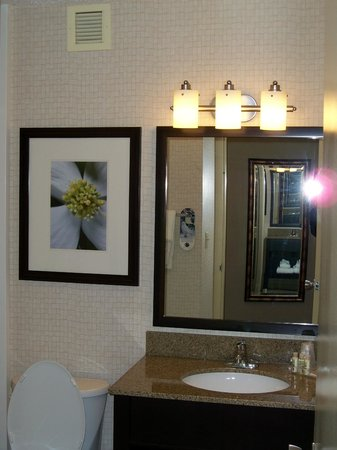 Holiday Inn Elmira Riverview : Bathroom