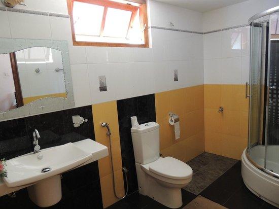 Eeshani Guest Inn : bagno con doccia