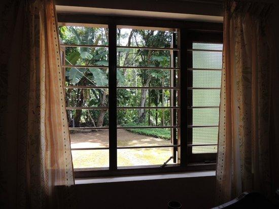 Eeshani Guest Inn : vista sul giardino sul retro