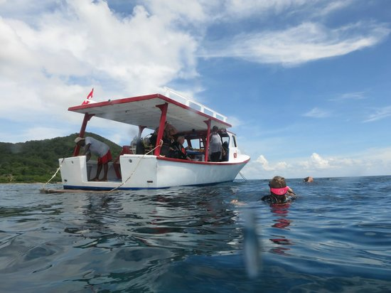 Reef House Resort : Dive Boat