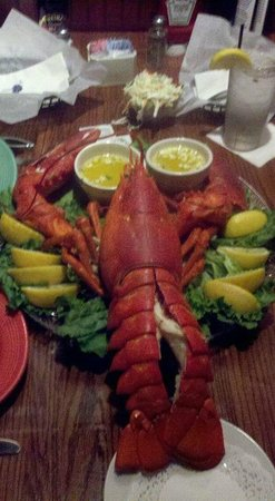 British Open Pub : 5 1/2 lb. Lobster for the Bennetts Anniversary dinner!