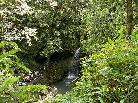 Emerald Pool Nature Trail: Emerald Pool