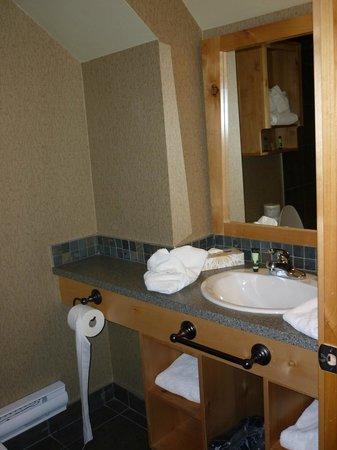 Fox Hotel & Suites: banheiro