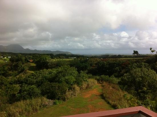 Kauai Banyan Inn: view from the room. picture doesn't do it justice