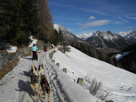 Centro Italiano Sleddog Husky Village: In gita