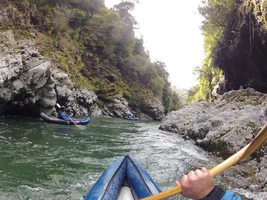 Pelorus Eco Adventures: getlstd_property_photo