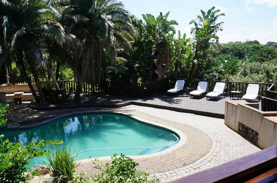 Zizi Lodge Leisure Bay: Pool