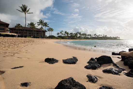 Sheraton Kauai Resort : Public beach in front of the hotel