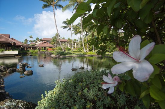 Sheraton Kauai Resort : Hotel grounds