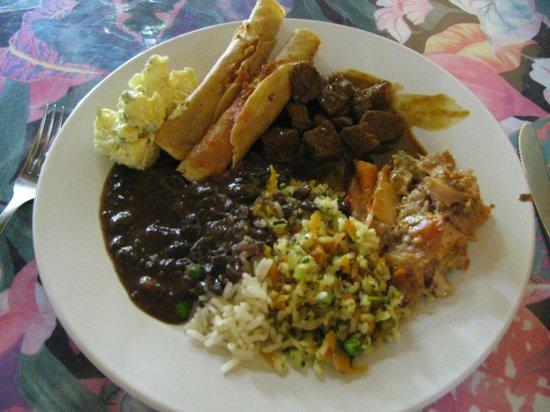 Planeta Vegetariano: Taquitos, black beans, rice, veggie lasagna, potato salad.