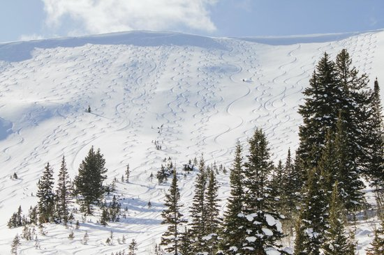 Utah Mountain Resort Tours : Sunny powder days are what we live for.