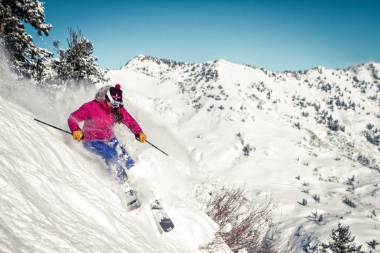 Utah Mountain Resort Tours - Day Tours : Cottonwood Canyons, home to Snowbird, Alta, Brighton and Solitude