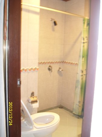Thipurai City Hotel: Bathroom, singleroom