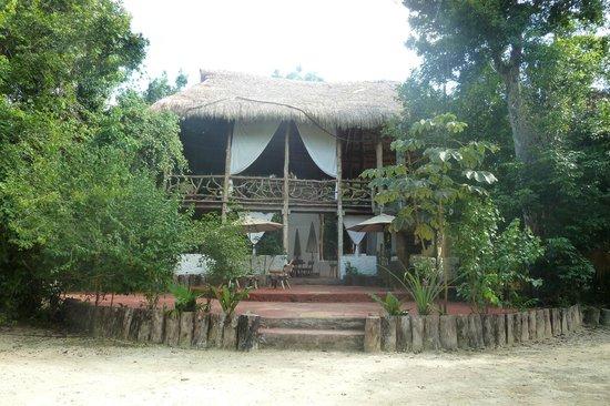 Jolie Jungle: La casa club