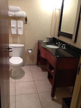 DoubleTree by Hilton Hotel Greensboro: I like the vanity, but not the showerhead