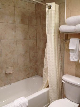 DoubleTree by Hilton Hotel Greensboro: good tile but the shower head not too much