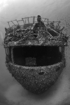 Blue Fin Divers Naxos Greece: wreck marianna