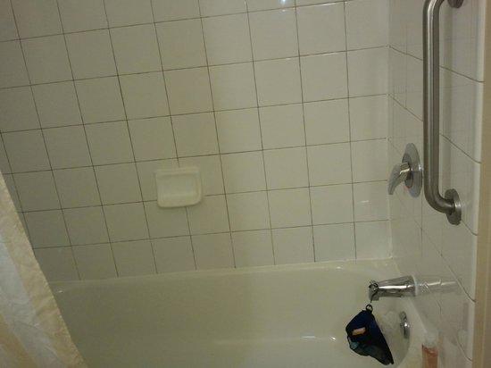 Hilton Garden Inn Savannah Airport: Bathtub/shower