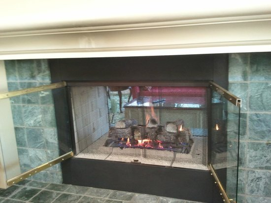 Hilton Garden Inn Savannah Airport: Fireplace