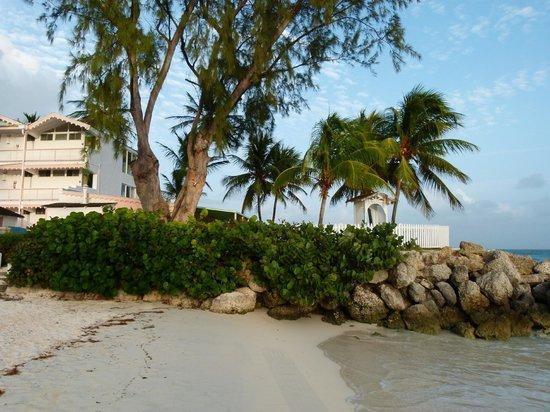 Bougainvillea Beach Resort: the beach, baby