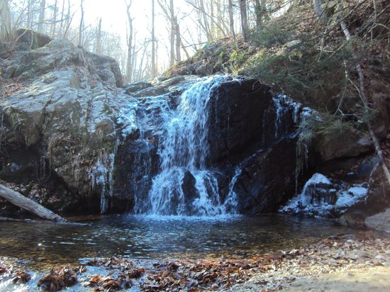 Patapsco Valley State Park : Cascade Falls Hike