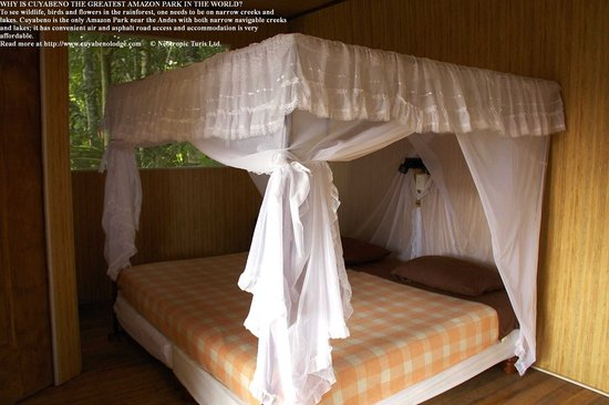 Cuyabeno Lodge: A comfortable bed at night, well protected from bugs makes you feel safe
