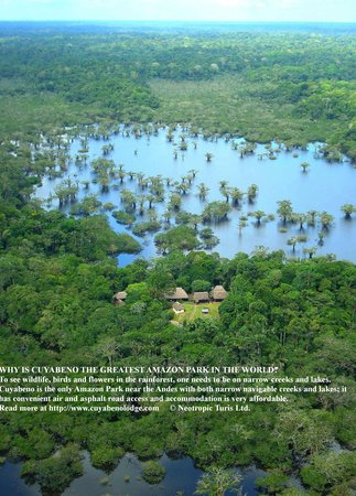Cuyabeno Lodge: The 600,000 ha of Cuaybeno are now well protected