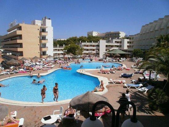 TRH Magaluf: piscina TRH palmanova, vista camere