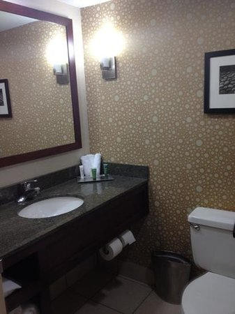 Hilton Knoxville: bathroom