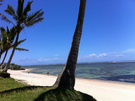 Bedarra Beach Inn : The beach