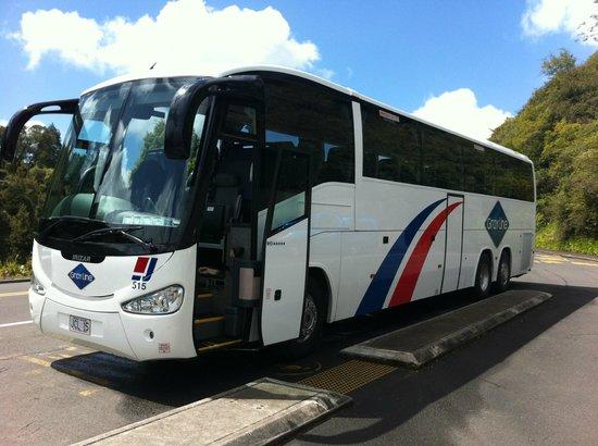 Gray Line New Zealand: Waitomo Rotorua Deluxe Tour