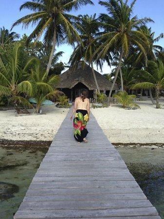 Paradise Picture Of Playa Sonrisa Xcalak Tripadvisor