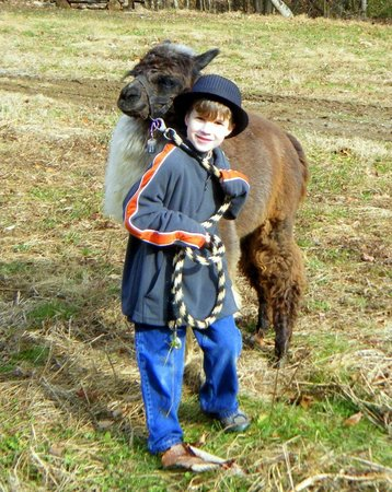 Smoky Mountain Llama Treks - Day Tours照片