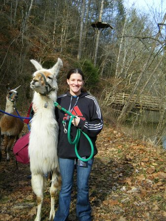 Smoky Mountain Llama Treks - Day Tours: Woody and Jill
